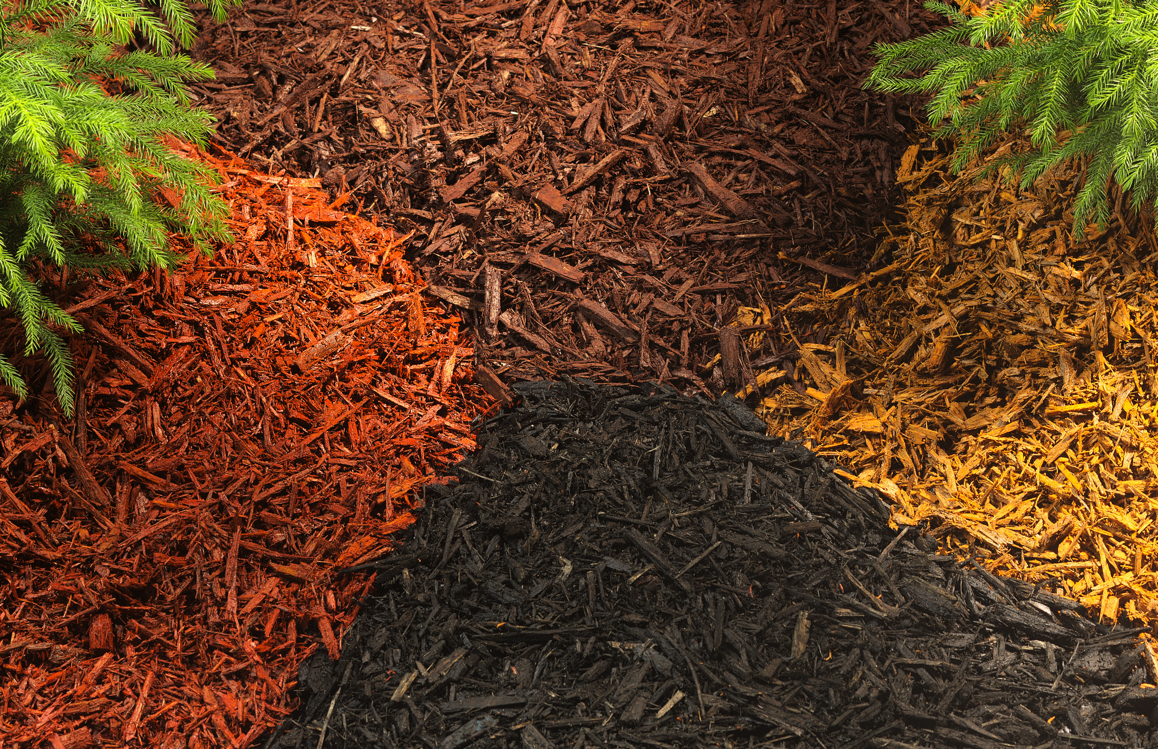 Mulch What Is It - Garden Inspiration