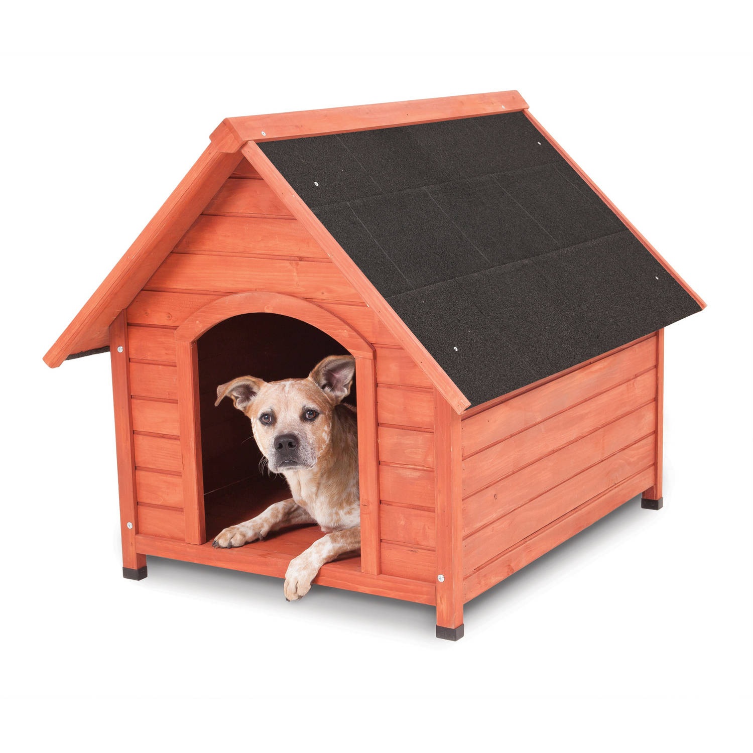 How to build a dog house cost best tips contractorculture for How to build a house without a contractor