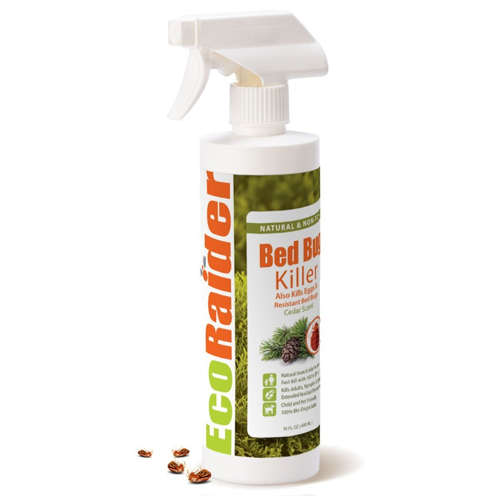 2. Bed Bug Killer by EcoRaider