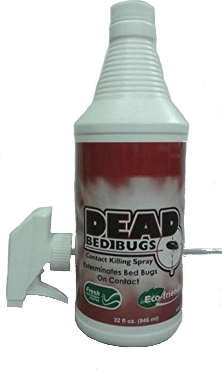 8. Dead Bed Bugs