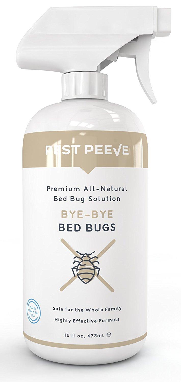 5. Bye-Bye Bed Bugs