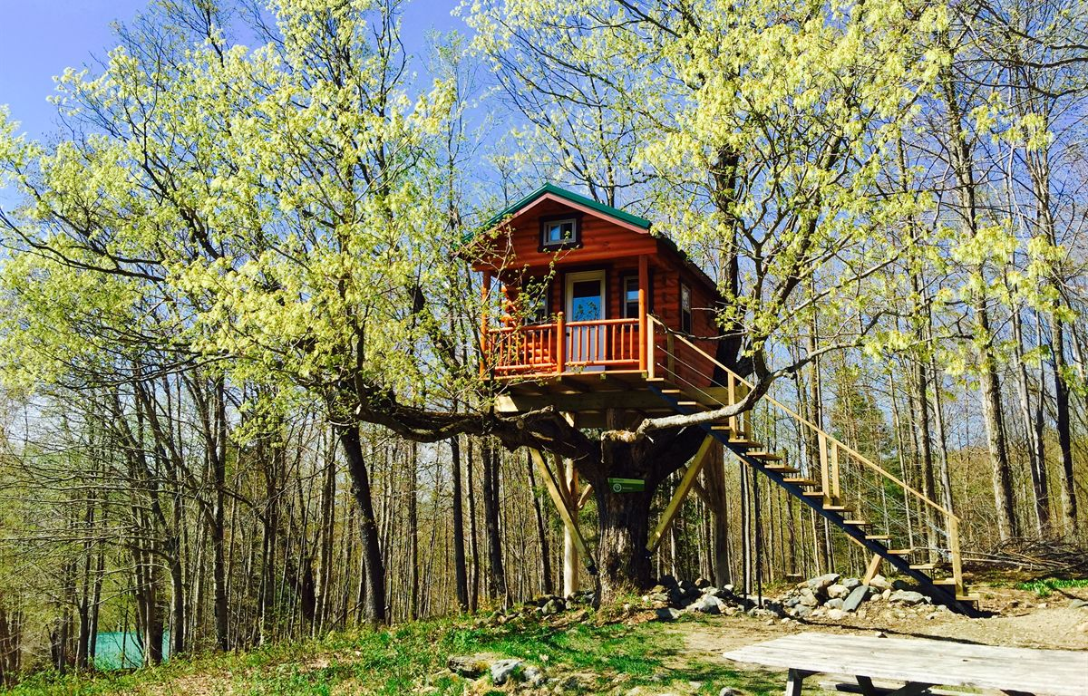how to build a treehouse diy tips   cost guide cost of bathroom addition homewyse cost of bathroom addition in existing space
