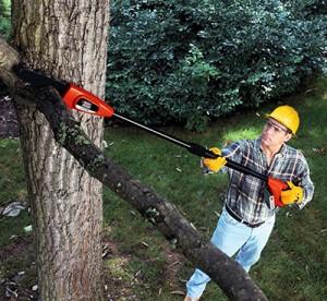 A man using a pole saw