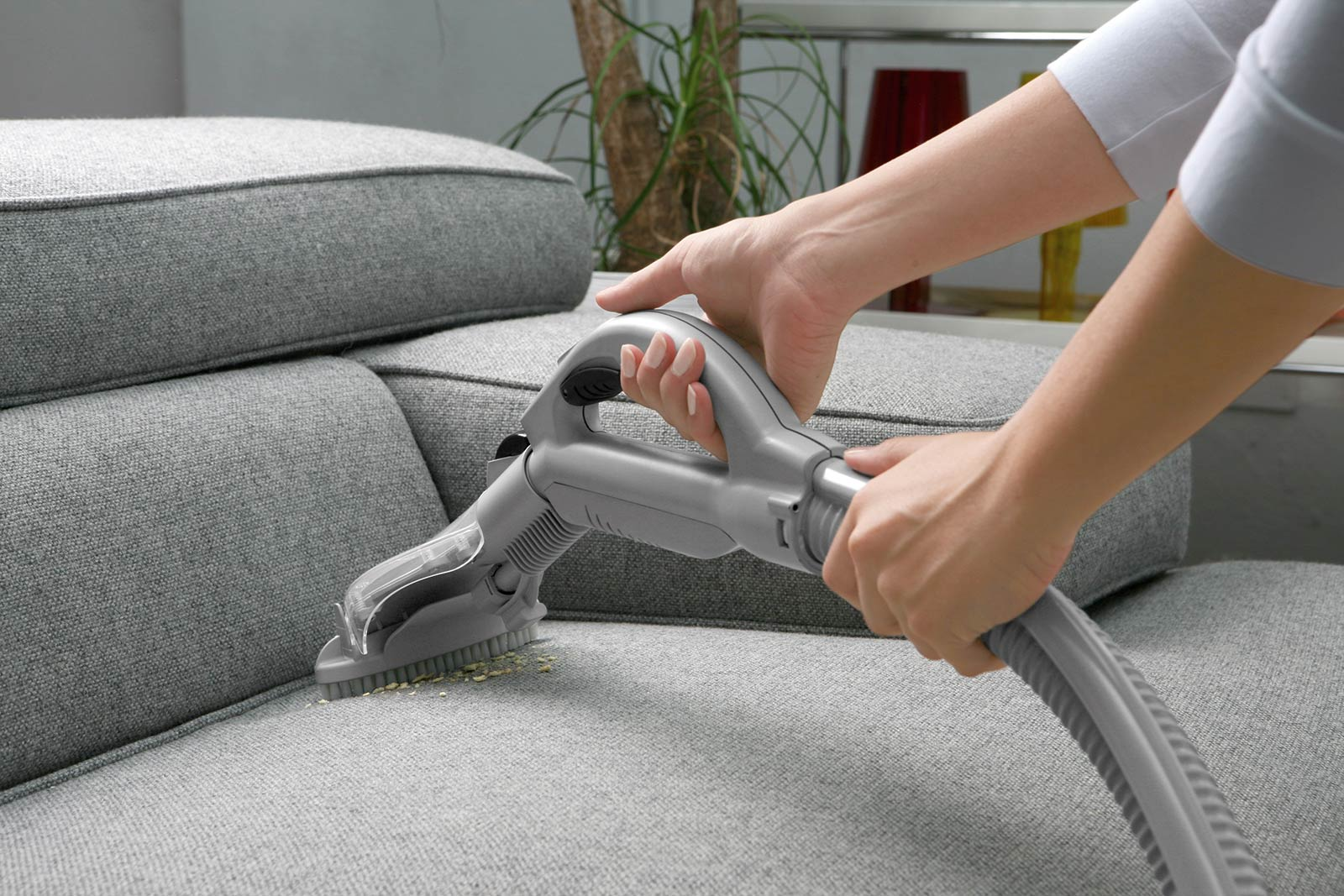 Elegant Sofa Cleaning Tips Products To Clean Your Contractorculture