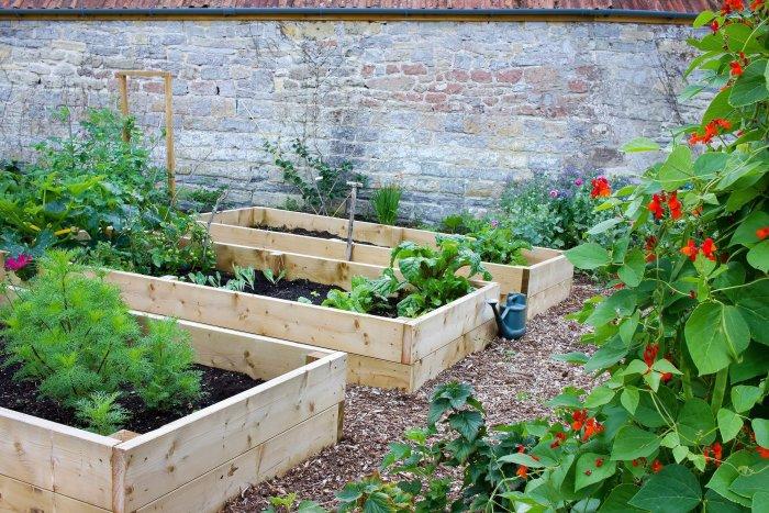 organic garden size