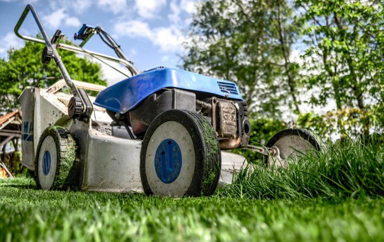 Smart Tips on Lawn Care