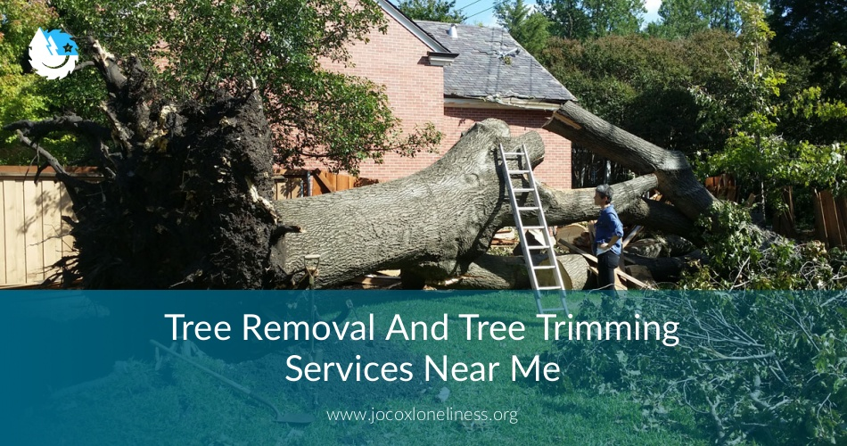 Tree Removal Amp Trimming Services Near Me Checklist