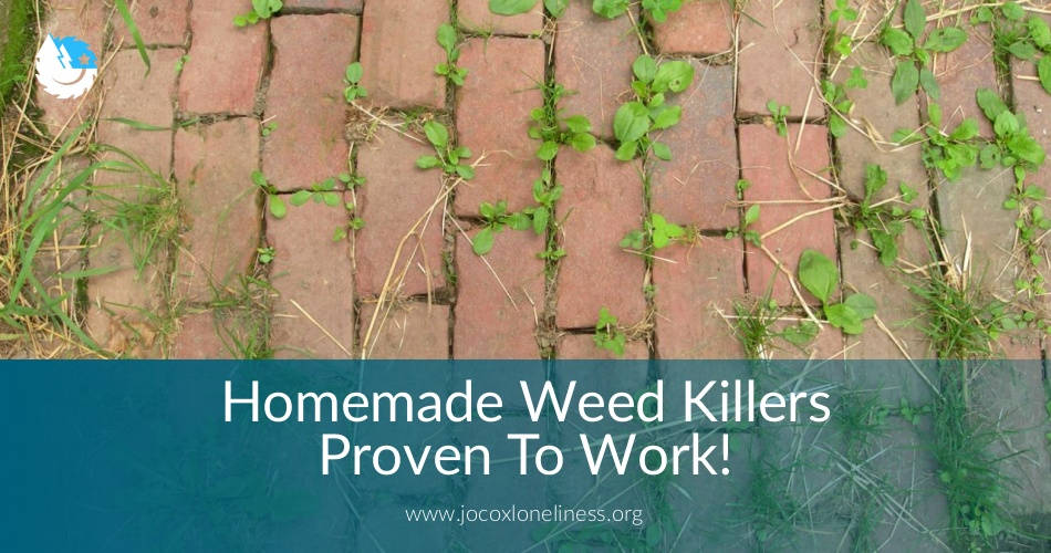 homemade weed killers proven to work  always