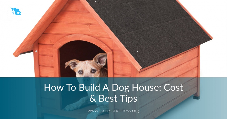 How To Build A Dog House Cost Best Tips Joloneliness