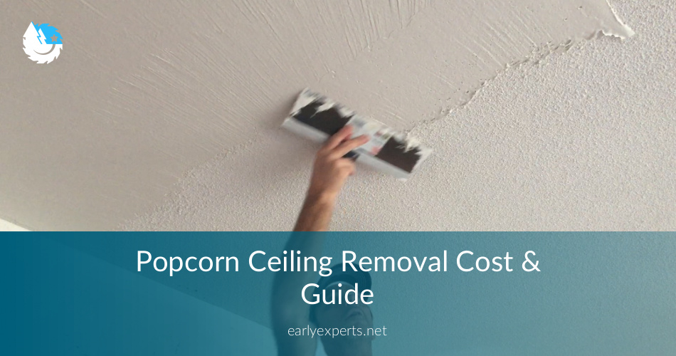 Popcorn Ceiling Removal Cost Professional Services DIY Guide