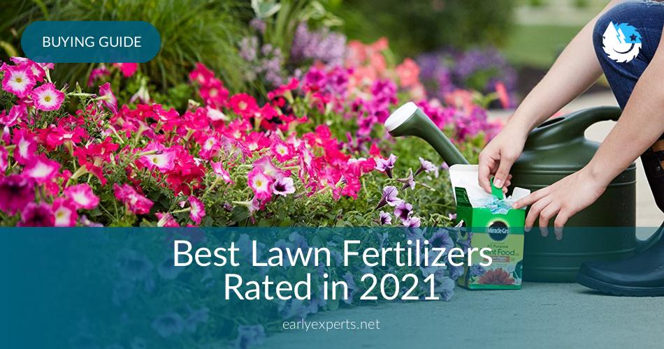 Best Lawn Fertilizers Reviewed In 2020